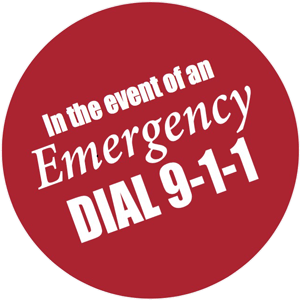 911 emergency sticker